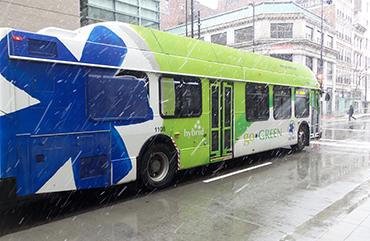 Bus Transit Christmas Day 2021